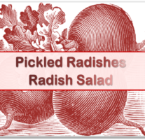 Radish Salad – Beveled Icon